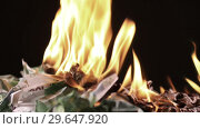 Купить «Bunch of burning one hundred Euro banknotes rotate on a black background close-up 60fps», видеоролик № 29647920, снято 31 декабря 2018 г. (c) Алексей Кузнецов / Фотобанк Лори