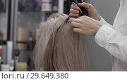Купить «The Hands Of A Woman Hairdresser Separate The Hair Strand Of The Client Girl», видеоролик № 29649380, снято 16 июля 2020 г. (c) Pavel Biryukov / Фотобанк Лори