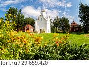 Купить «Church of the Nativity of the Theotokos (1226) on Peryn Skete in Veliky Novgorod, Russia», фото № 29659420, снято 17 августа 2017 г. (c) FotograFF / Фотобанк Лори