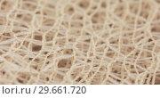 Купить «The texture of the mesh fabric», видеоролик № 29661720, снято 22 декабря 2018 г. (c) Потийко Сергей / Фотобанк Лори