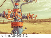 Купить «Wellheads with valve armature on a oil field», фото № 29665512, снято 24 мая 2016 г. (c) bashta / Фотобанк Лори