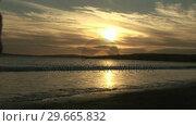 Купить «A Couple Walking on the Beach», видеоролик № 29665832, снято 11 декабря 2007 г. (c) Wavebreak Media / Фотобанк Лори