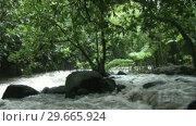 Купить «Stock Footage Tropical River Rapids», видеоролик № 29665924, снято 22 апреля 2019 г. (c) Wavebreak Media / Фотобанк Лори