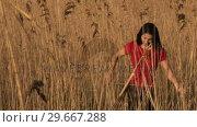 Купить «Woman in Reeds», видеоролик № 29667288, снято 23 марта 2019 г. (c) Wavebreak Media / Фотобанк Лори