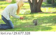 Young woman feeding a squirrel. Стоковое видео, агентство Wavebreak Media / Фотобанк Лори