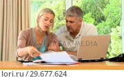 Купить «Young wife desperately worried about bills », видеоролик № 29677624, снято 6 ноября 2010 г. (c) Wavebreak Media / Фотобанк Лори