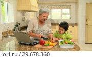Купить «Woman showing her grandson how to cook», видеоролик № 29678360, снято 5 ноября 2010 г. (c) Wavebreak Media / Фотобанк Лори