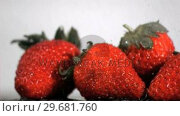 Купить «Drops in super slow motion falling on strawberries», видеоролик № 29681760, снято 16 января 2019 г. (c) Wavebreak Media / Фотобанк Лори