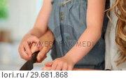 Купить «Girl cutting a pepper with her mother», видеоролик № 29681868, снято 25 ноября 2011 г. (c) Wavebreak Media / Фотобанк Лори
