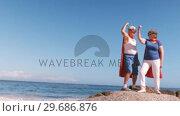 Купить «Fancy-dress mature couple raising arm», видеоролик № 29686876, снято 12 ноября 2015 г. (c) Wavebreak Media / Фотобанк Лори