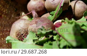 Купить «Close-up of beet root in wicker basket», видеоролик № 29687268, снято 16 февраля 2016 г. (c) Wavebreak Media / Фотобанк Лори