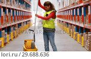 Купить «Female warehouse worker moping floor», видеоролик № 29688636, снято 23 марта 2016 г. (c) Wavebreak Media / Фотобанк Лори