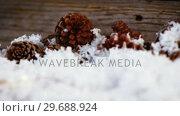 Купить «Pine cones decoration on fake snow», видеоролик № 29688924, снято 30 августа 2016 г. (c) Wavebreak Media / Фотобанк Лори