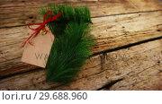 Купить «Christmas fir and tag on wooden plank», видеоролик № 29688960, снято 30 августа 2016 г. (c) Wavebreak Media / Фотобанк Лори