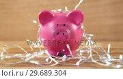 Купить «Piggy bank with fairy lights on wooden table», видеоролик № 29689304, снято 8 июня 2016 г. (c) Wavebreak Media / Фотобанк Лори