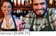 Купить «Portrait of smiling barmaid and barman at bar counter», видеоролик № 29695772, снято 14 ноября 2016 г. (c) Wavebreak Media / Фотобанк Лори