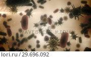 Купить «Digitally generated virus cells, red blood cells and bacteria against brown background», видеоролик № 29696092, снято 20 октября 2016 г. (c) Wavebreak Media / Фотобанк Лори