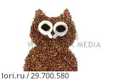 Купить «Coffee beans and cups forming owl», видеоролик № 29700580, снято 6 октября 2016 г. (c) Wavebreak Media / Фотобанк Лори
