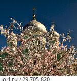 Купить «С Рождеством Христовым, братья и сестры!», фото № 29705820, снято 5 апреля 2018 г. (c) oleg savichev / Фотобанк Лори