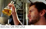 Купить «Close-up of brewer testing beer 4k», видеоролик № 29707212, снято 28 марта 2017 г. (c) Wavebreak Media / Фотобанк Лори