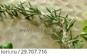 Купить «Various type of herbs in plate 4k», видеоролик № 29707716, снято 5 июня 2017 г. (c) Wavebreak Media / Фотобанк Лори