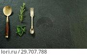 Купить «Two metal spoons with chives and rosemary 4k», видеоролик № 29707788, снято 5 июня 2017 г. (c) Wavebreak Media / Фотобанк Лори
