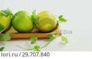 Купить «Lime fruits in a tray with coriander leaf 4k», видеоролик № 29707840, снято 5 июня 2017 г. (c) Wavebreak Media / Фотобанк Лори