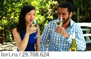 Купить «Couple toasting glasses of wine in outdoor restaurant 4k», видеоролик № 29708624, снято 21 ноября 2016 г. (c) Wavebreak Media / Фотобанк Лори