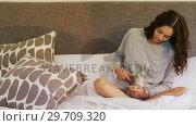 Купить «Young woman sitting on bed stroking her tabby cat 4K 4k», видеоролик № 29709320, снято 31 мая 2017 г. (c) Wavebreak Media / Фотобанк Лори