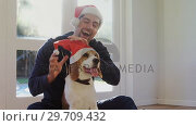 Купить «Smiling young man putting santa cap on his pet dog 4K 4k», видеоролик № 29709432, снято 31 мая 2017 г. (c) Wavebreak Media / Фотобанк Лори