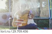 Купить «Young man celebrating pet dog birthday in garden 4K 4k», видеоролик № 29709436, снято 31 мая 2017 г. (c) Wavebreak Media / Фотобанк Лори