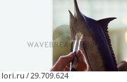 Купить «Craftsman polishing fish sculpture 4k», видеоролик № 29709624, снято 30 мая 2017 г. (c) Wavebreak Media / Фотобанк Лори