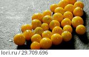 Купить «Golden berries on grey background 4K 4k», видеоролик № 29709696, снято 12 июня 2017 г. (c) Wavebreak Media / Фотобанк Лори