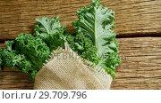 Купить «Green leafy vegetable wrapped with textile 4k», видеоролик № 29709796, снято 12 июня 2017 г. (c) Wavebreak Media / Фотобанк Лори