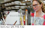 Купить «Female potter decorating bowl 4k», видеоролик № 29710132, снято 6 августа 2017 г. (c) Wavebreak Media / Фотобанк Лори