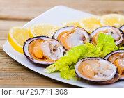 Купить «Raw bivalve shellfishes with lemon», фото № 29711308, снято 20 января 2019 г. (c) Яков Филимонов / Фотобанк Лори
