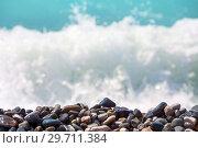 Купить «Pebble on the seashore», фото № 29711384, снято 2 июня 2018 г. (c) Икан Леонид / Фотобанк Лори