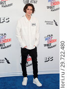 The 33rd Annual Film Independent Spirit Awards at Santa Monica Pier (2018 год). Редакционное фото, фотограф FayesVision / WENN.com / age Fotostock / Фотобанк Лори