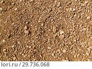 Купить «rocky ground of desert», фото № 29736068, снято 1 марта 2018 г. (c) Syda Productions / Фотобанк Лори