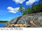 Купить «Karelian landscape - rocks, pine trees and water. Bay Chupa, White Sea, Karelia, Russia», фото № 29738052, снято 10 августа 2018 г. (c) Сергей Трофименко / Фотобанк Лори