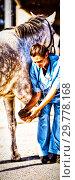Купить «Female jockey looking at vet examining horse hoof», фото № 29778168, снято 12 декабря 2019 г. (c) Wavebreak Media / Фотобанк Лори