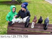 Купить «Children are looking at decorative pigeons», фото № 29779708, снято 2 июня 2018 г. (c) FotograFF / Фотобанк Лори
