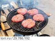 Купить «Barbecue with delicious grilled meat on the hot coals of grill», фото № 29786192, снято 28 апреля 2018 г. (c) FotograFF / Фотобанк Лори