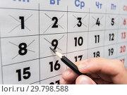 Купить «Рука карандашом вычеркивает даты в настенном календаре», фото № 29798588, снято 28 января 2019 г. (c) Иванов Алексей / Фотобанк Лори