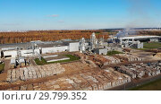 Wood processing at a woodworking plant.Aerial view. Стоковое видео, видеограф Никита Ковалёв / Фотобанк Лори