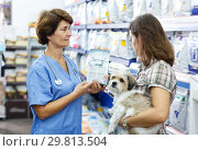 Купить «Jolly veterinary consulting female client», фото № 29813504, снято 27 августа 2018 г. (c) Яков Филимонов / Фотобанк Лори