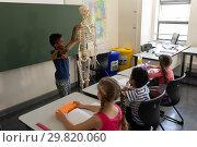 Купить «Side view of schoolboy explaining human skeleton model in classroom», фото № 29820060, снято 10 ноября 2018 г. (c) Wavebreak Media / Фотобанк Лори
