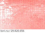 Купить «abstract living coral color background», фото № 29820656, снято 18 февраля 2018 г. (c) Syda Productions / Фотобанк Лори