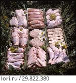 Купить «Продукция Петелинской птицефабрики», фото № 29822380, снято 24 апреля 2019 г. (c) Борис Кавашкин / Фотобанк Лори