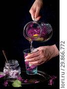 Купить «Femail hands poured from jug to glass lilac lemonade with lemon. Glass jar of sugared lilac flowers on black tablecloth over black. Dark rustic atmosphere. See series.», фото № 29866772, снято 29 марта 2020 г. (c) age Fotostock / Фотобанк Лори